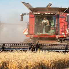Nagy István: a mezőgazdaság versenyképességének kulcsa a munkaerőhiány enyhítése