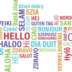 Hová tűntek az ingyenes nyelvtanfolyamok?